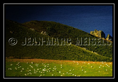 Photographe - Jean-Marc Meisels - photo 40