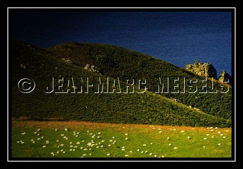 Photographe - Jean-Marc Meisels - photo 40