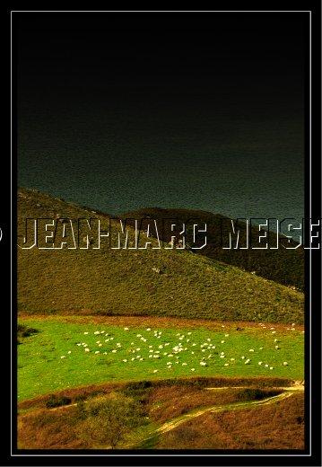 Photographe - Jean-Marc Meisels - photo 37