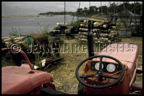 Photographe - Jean-Marc Meisels - photo 3
