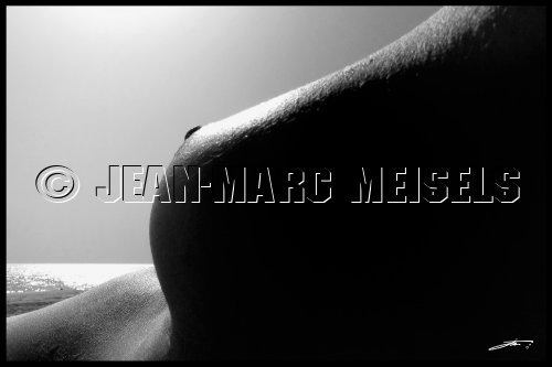 Photographe - Jean-Marc Meisels - photo 7